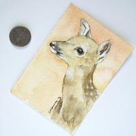 ORIGINAL ACEO No.41 'Young Deer' Wildlife Watercolor & Charcoal Painting