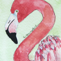 ORIGINAL ACEO No.46 'Flamingo' Wildlife Watercolor & Charcoal Painting