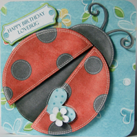 Happy Birthday Lovebug 3D Ladybird Birthday Card