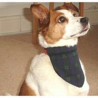 Dog Bandana Over The Collar Scarf Blackwatch Tartan Plaid Check
