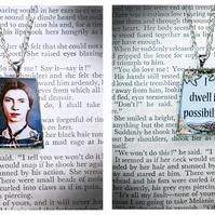 Emily Dickinson  Pendant - I Dwell in Possibility