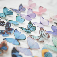 Silk Butterfly hair clip with Swarovski Crystal - Select your favourite!