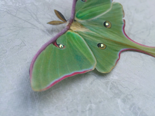 Silk Luna Moth hair clip with Swarovski Crystals.