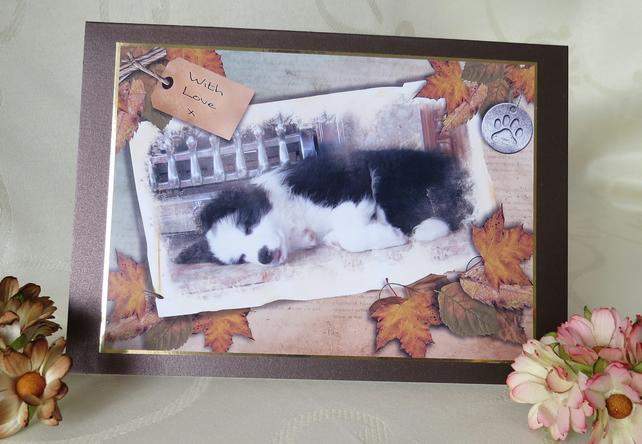 Sleeping Puppy - Border Collie Greeting Card