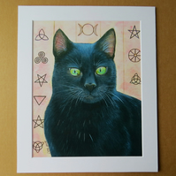 MAGIC CAT - ART PRINT WITH MOUNT