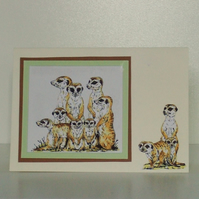 Blank card for Any Occasion, can be personalised. Meercat Family,