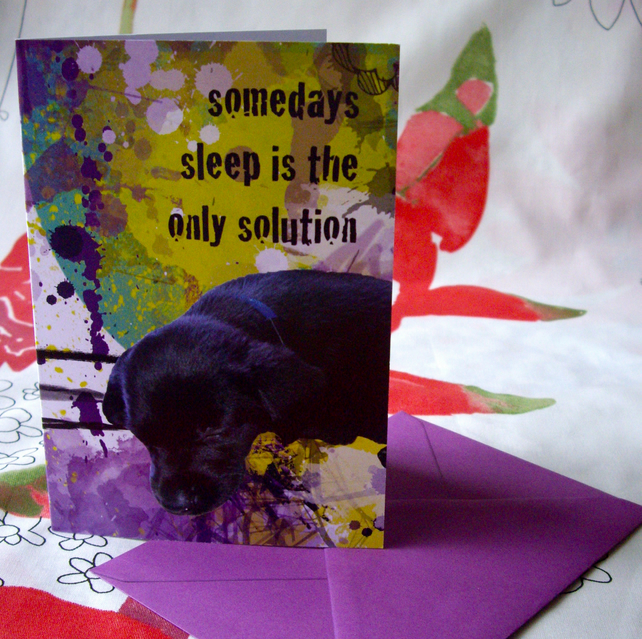 'Sleepy Biscuit' blank labrador greeting card