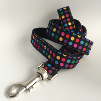 multi colour spotty dog lead