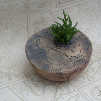 Large Coracle planter