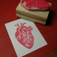Anatomical Heart - Hand carved rubber stamp