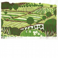 Patchwork Fields Lino print.