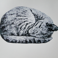 Sleeping Cat Limited Edition Collagraph Print