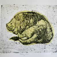 Sleepy Lion One-Off Hand Pulled Collagraph Print with yellow Chine Colle