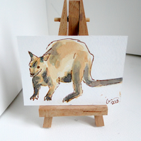 ACEO Wallaby Original Watercolour and Ink Painting