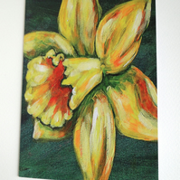 Daffodil Blank Greeting Card From my Original Art Flower Acrylic Painting