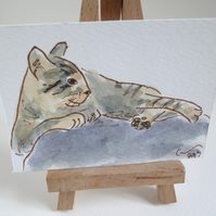 ACEO Art Cat Doze Original Watercolour & Ink Painting OOAK