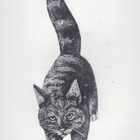 Black Cat Limited Edition Collagraph Print