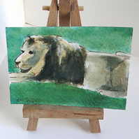 ACEO Animal Art Lion Relax Original Watercolour and Ink Painting OOAK Cat