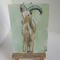 ACEO Animal Art Barbary Sheep Original Watercolour and Ink Painting OOAK