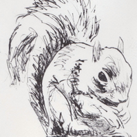 Squirrel Limited Edition Original Hand-Pulled Drypoint Print Animal Art