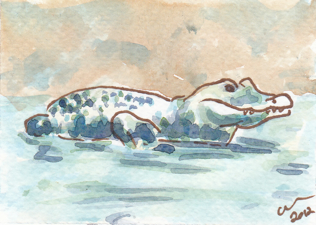 ACEO Animal Art Caiman Original Watercolour and Ink Painting OOAK Crocodile