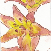 ACEO Floral Art Orange Lilies Original Watercolour and Ink Painting OOAK
