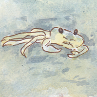 ACEO Animal Art Crab Original Watercolour and Ink Painting OOAK Seaside