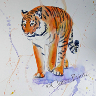 Tiger Stroll Original Watercolor Animal Art Painting Cat