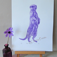 Purple Meerkat Animal Limited Edition Collagraph Print Art