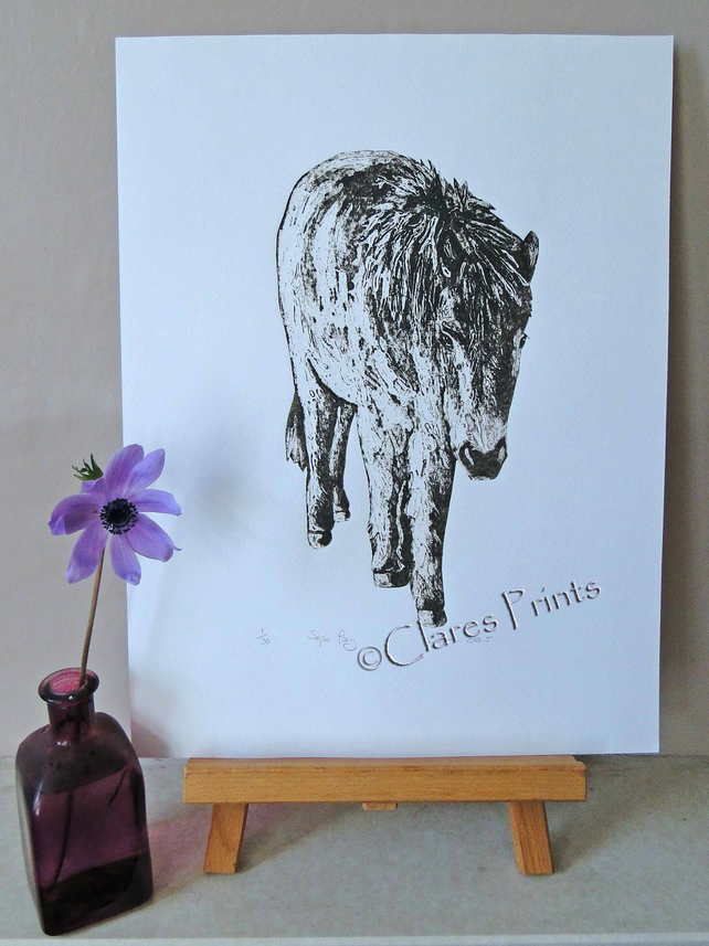 Horse Pony Art Print Limited Edition Hand-Pulled Collagraph