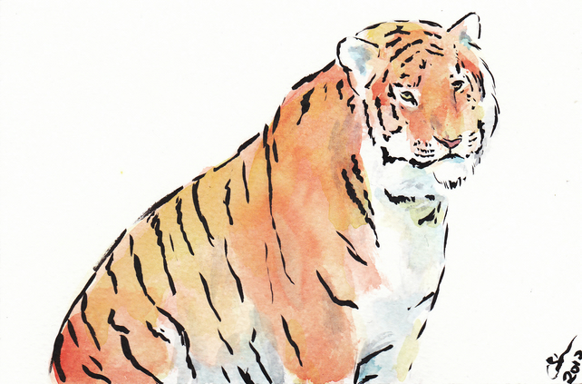 OSWOA Tiger Calm Art  Original Watercolour & Ink Painting 4x6 OOAK Cat