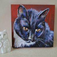 Cat painting Black & White Cat Original Acrylic Painting on Canvas OOAK Art