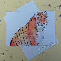 Tiger Blank Greeting Card From my Original Watercolour Painting