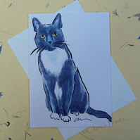 Interested Cat Blank Greeting Card From my Original Watercolour Painting