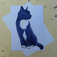 Black & White Cat Sit Blank Greeting Card From my Original Watercolour Painting