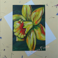 Daffodil Blank Greeting Card From my Original Acrylic Painting