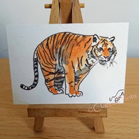 ACEO Animal Art Tiger Pounce Original Watercolour Ink Painting OOAK