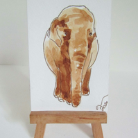 ACEO Art Posing Elephant Original Watercolour & Ink Painting OOAK