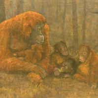 Orangutans, Signed Fine Art Print 9x7 inches
