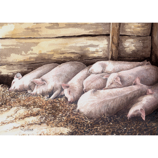 Piglets Original Watercolour Painting
