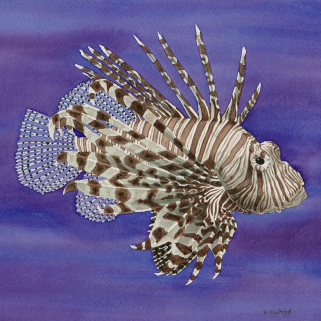 Lionfish - Original Watercolour Painting