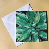 Greetings Card - Blank - Agave Attenuata