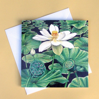Greetings Card - Blank - Lotus
