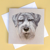 Greetings Card - Blank - Schnauzer Dog Portrait