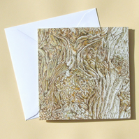 Greetings Card - Blank - Tulip Tree Bark