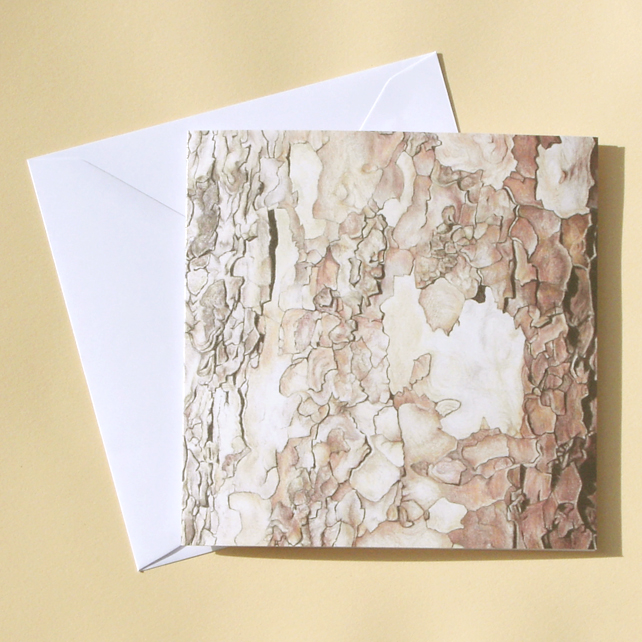 Greetings Card - Blank - Plane Tree Bark