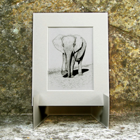 Elephant Original Graphite Pencil Drawing