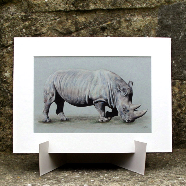 Browsing Rhino - Original Coloured Pencil Drawing