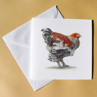 Greetings Card - Blank - Fancy Chicken