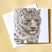Greetings Card - Blank - Snow Leopard